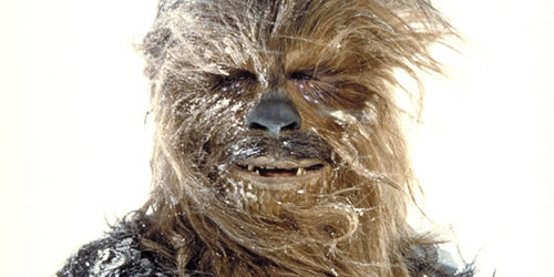 The Force Awakens cast will feature the return of Peter Mayhew as Chewie!