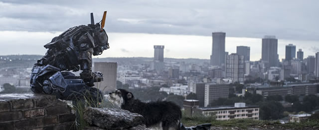 Chappie box office results