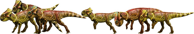 The microceratus are featured among the Jurassic World dinosaurs.
