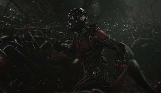 "Check Out a dozen new Ant-Man stills, offering a look at the upcoming ""Phase Three"" capper."