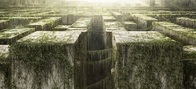 The Best Maze Movies of All Time