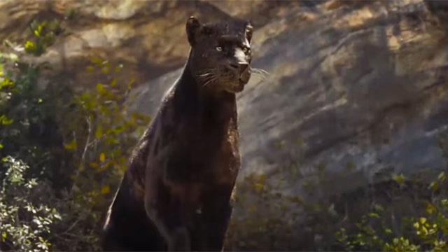 Bagheera is one of the strongest Jungle Book characters.