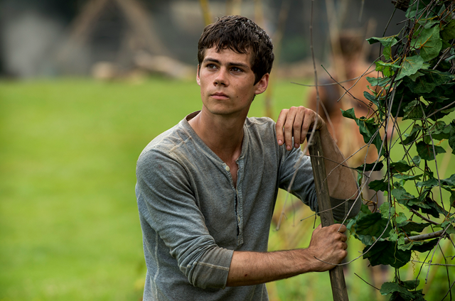 Dylan O'Brien Injured on the Set of Maze Runner: The Death Cure
