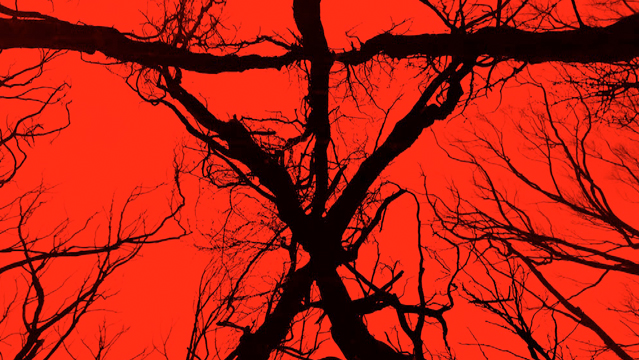 The new Blair Witch legend hits theaters in September.