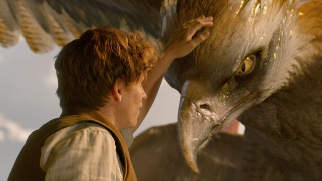 Check out more than 50 new Fantastic Beasts stills!