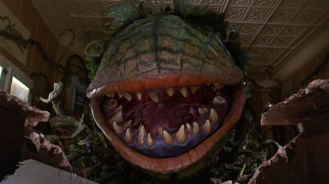 Another Little Shop of Horrors Remake on its Way