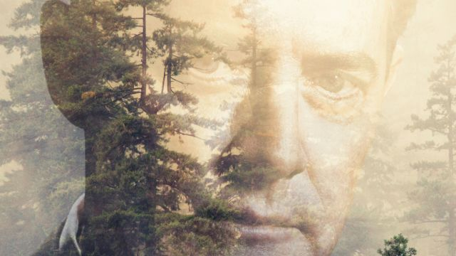 It's Happening Again: Two Twin Peaks Posters Debut!