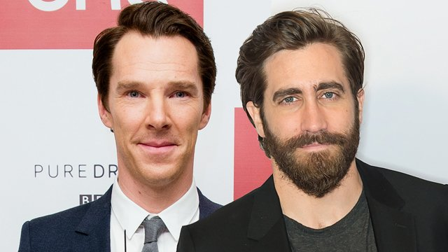 Cumberbatch and Gyllenhaal are up for a new Luca Guadagnino-helmed thriller by Steven Knight