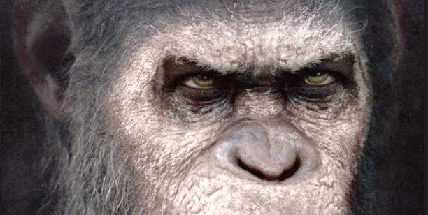 War for the Planet of the Apes Prequel Book Coming