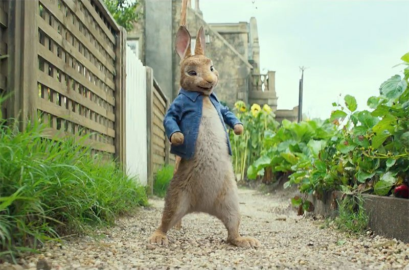 Peter Rabbit Sequel Officially In The Works