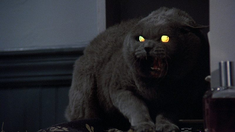 Pet Sematary remake gets release date