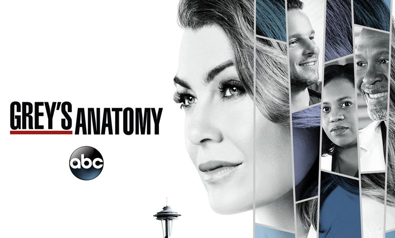 Grey\'s Anatomy Season 15 Given the Green Light by ABC