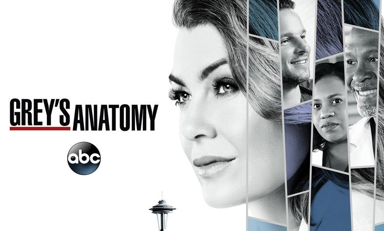 Greys Anatomy Season 15 Given The Green Light By Abc