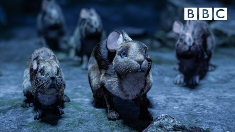 new clip from Watership Down
