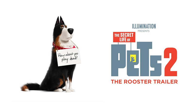 the secret life of pets 2 trailer welcomes harrison ford as rooster. Black Bedroom Furniture Sets. Home Design Ideas