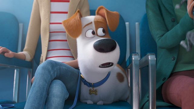 The Secret Life of Pets 2 Teaser Clip: New Trailer Comes Out Tomorrow