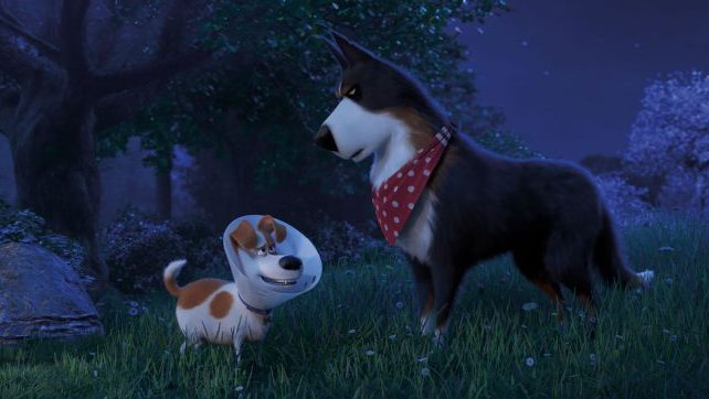 Max Meets Rooster in New The Secret Life of Pets 2 Clip