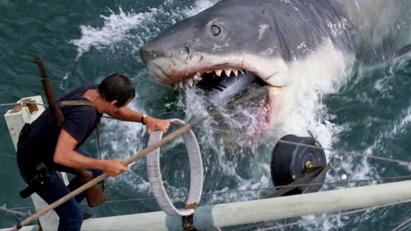 Original Jaws Shark Restored for Academy Museum of Motion Pictures