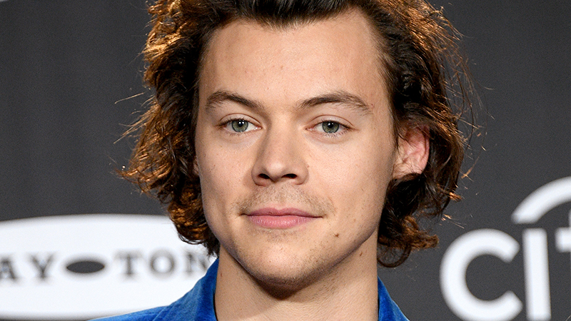 Unconfirmed Reports Say Disney Cast Harry Styles as Prince Eric