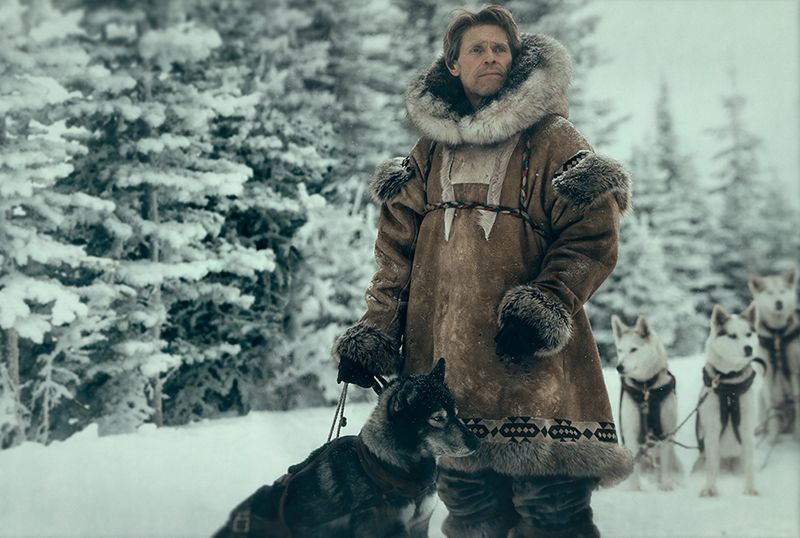 Disney+ Togo Trailer: Willem Dafoe Stars in the Untold True Story