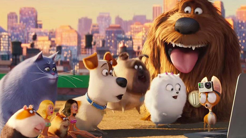 Secret Life of Pets Cast Reprise Characters for Universal Studios Ride