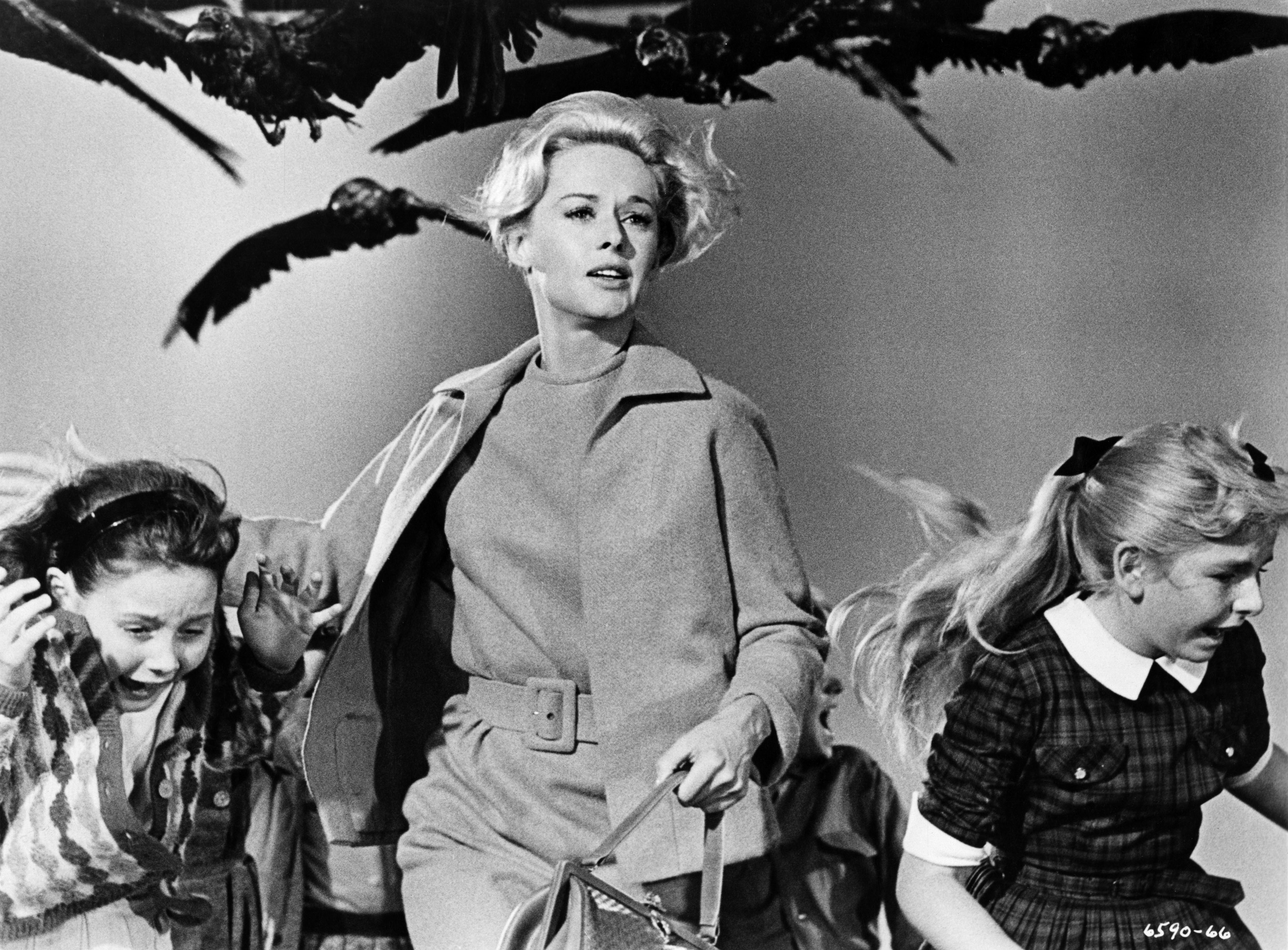 The Birds (1963) - October 17